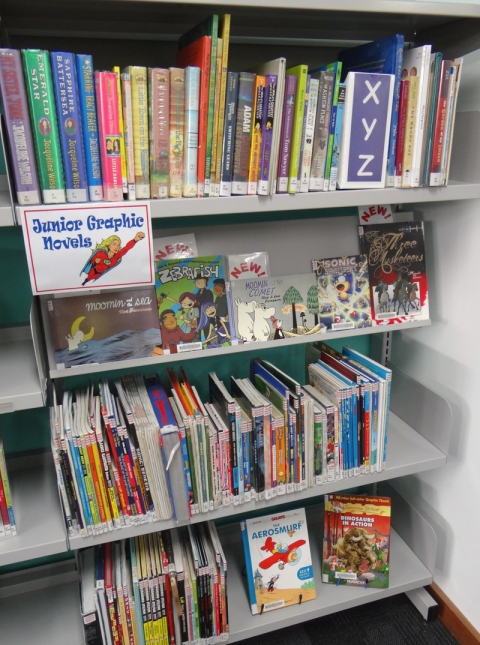 New Graphic Novels section in the Children's Library